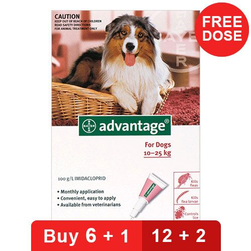Advantage Large Dogs 21-55lbs Red 4 Doses