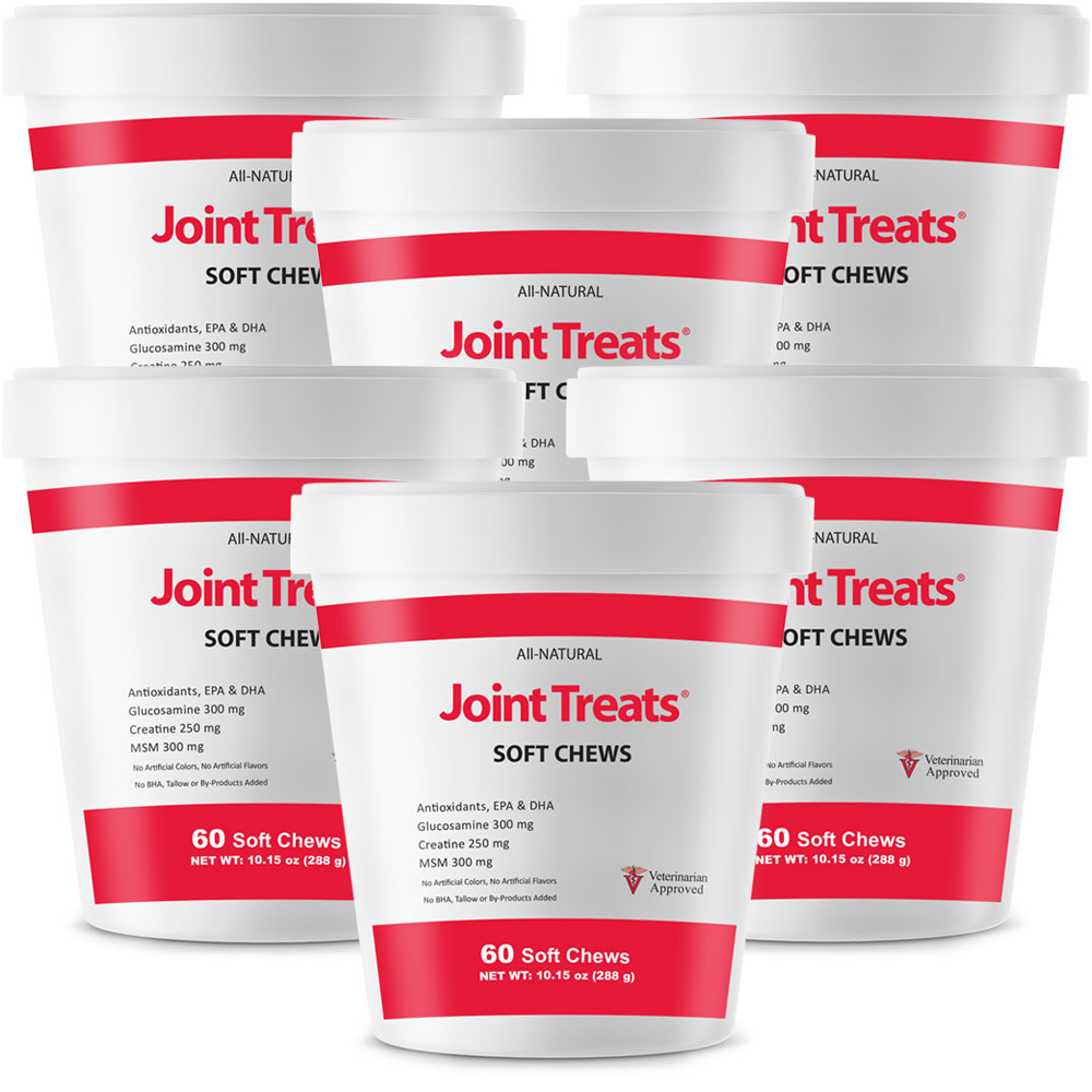 Joint Treats 6-Pack (360 Soft Chews)