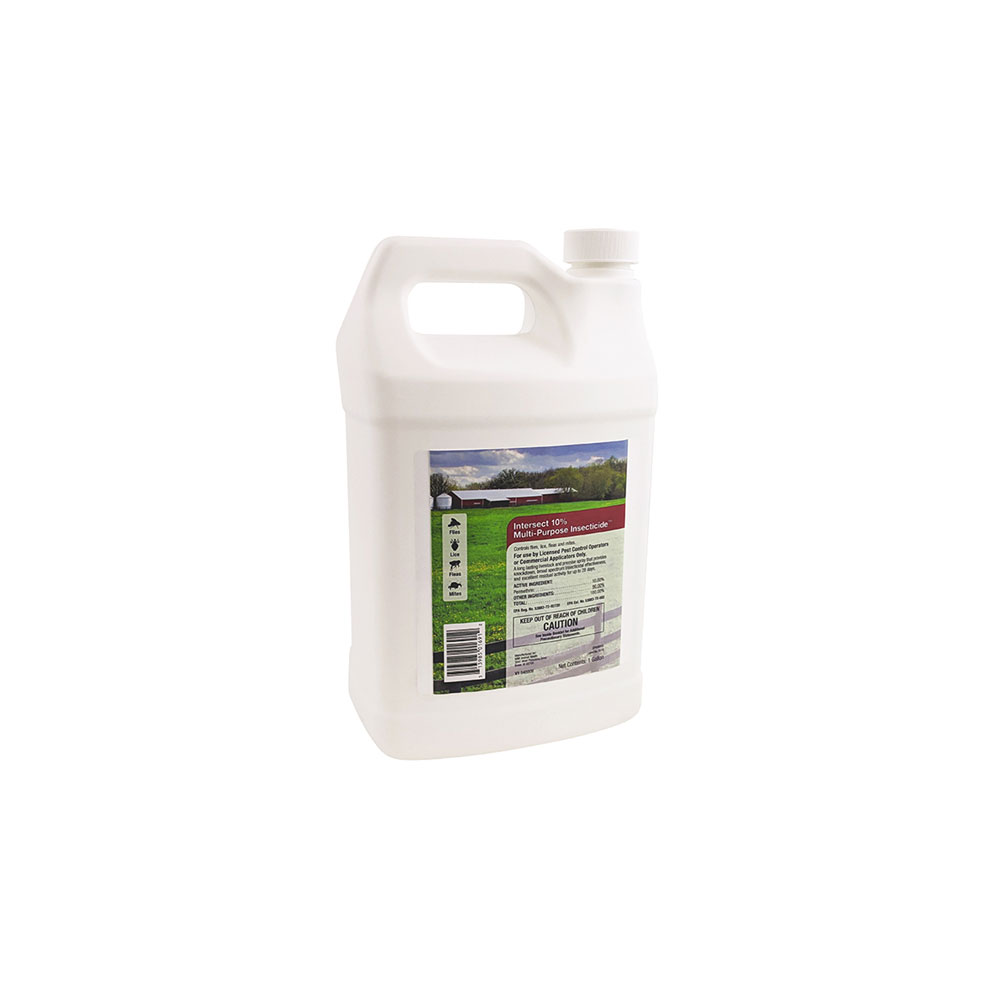 Intersect 10% Multi-Purpose Insecticide (1 Gallon)
