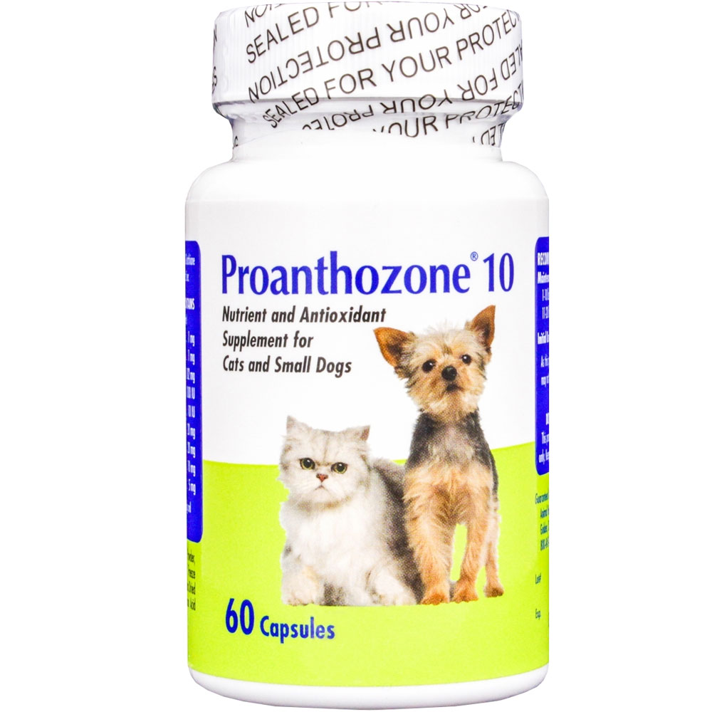 Proanthozone 10mg for Cats and Small Dogs 60 Caps